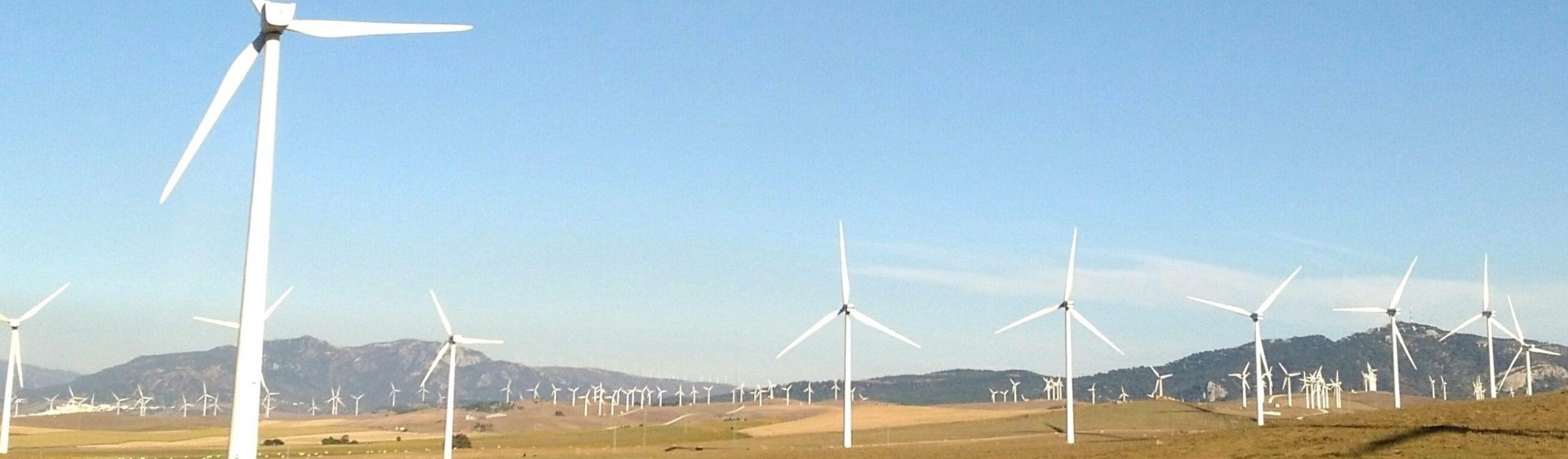 Renewables?